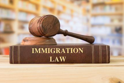 Migration Lawyer